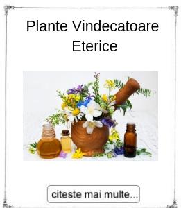 Plantele vindecatoare eterice, oferita de maestrul Gabriela Bogdan