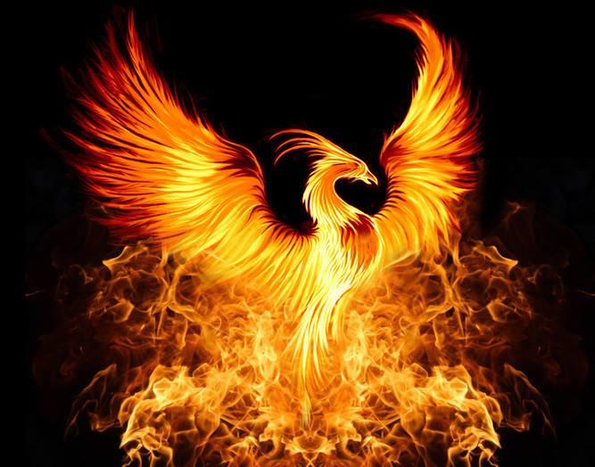 https://www.centruldesanatategabriela.ro/initieri-reiki-traditionale-si-new-age/phoenix-rising-reiki-oferita-de-maestrul-gabriela-bogdan/