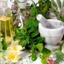 Rugaciune de vindecare adresata plantelor vindecatoare